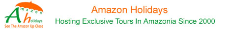 Amazon-holid bs.com