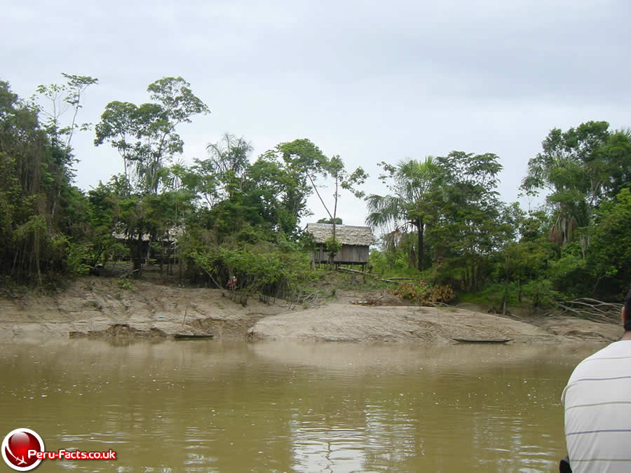 Peru Amazon Facts | Peru-Facts Facts About The Amazon